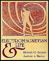 BOOK - ELECTROMAGNETISM